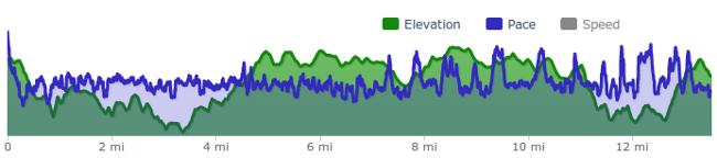 Runner's Pace